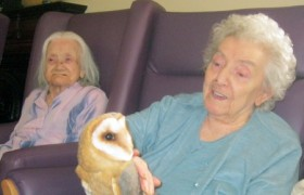 Care home welcomes animal assisted therapy with visit from Owl Magic